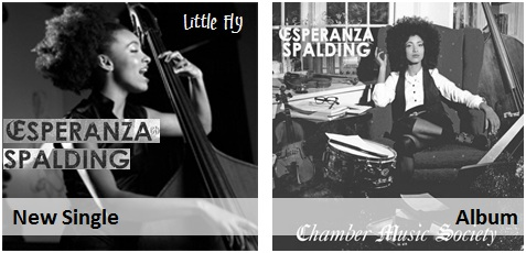 Esperanza Spalding - Little Fly new pop jazz radio